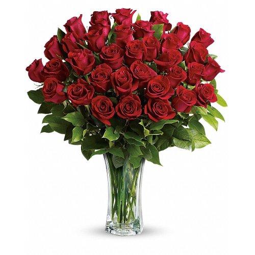 Medium Crop Of The Forever Rose