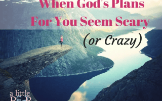 When God's Plans For You Seem Scary (or Crazy)