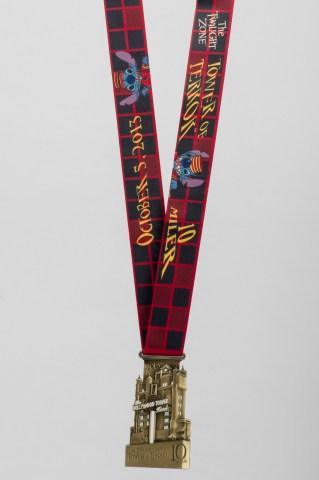 2013-ToT-Medal