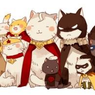 dc cats thumbnail