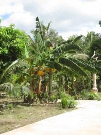Kampot127