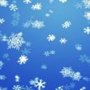 5. Závody – Mikulášský coursing Sněžné 10.12.2016 POZVÁNKA