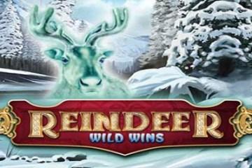 reindeer-wild-wins-slot