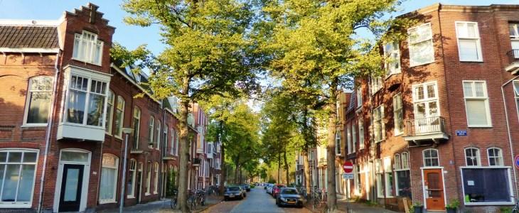 Herfst – Schildersbuurt, Groningen