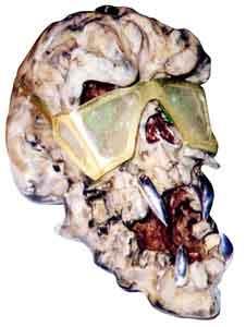 skull01-7