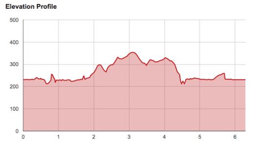 Race Report: Runner's World 10K & 5K