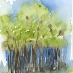 Watercolour painting. RWB0146 The Woodland. Artist: Vandy Massey