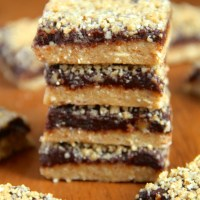 . no-bake vegan oatmeal fudge bars .