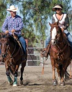 emily-ruocco-events-horse-clinics