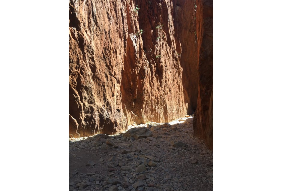 ALICESPRINGS08