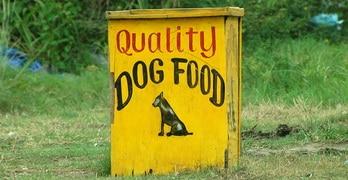 Why grain free dog food?