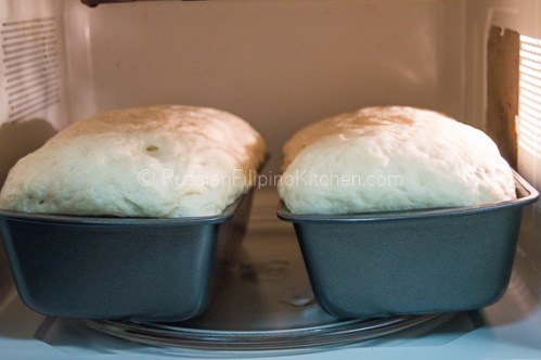Everyday White Bread 26