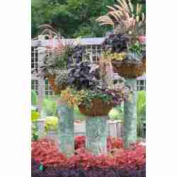 Small Crop Of Creative Garden Containers