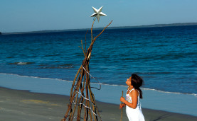 Christmas Tree with star on beach