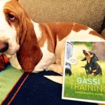 Gassi-Training_Sabine_Dinkel1