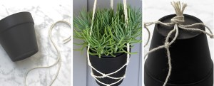 hanging planter feature image
