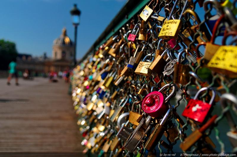 normal_Love-locks_on_Arts_brige_in_Paris_-_03