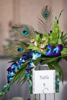 ideas for peacock wedding