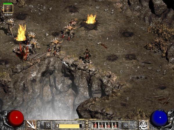 Diablo II combat screenshot.