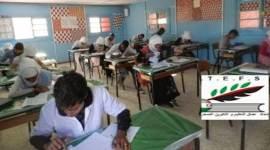 اتحاد عمال التعليم الصحراوي