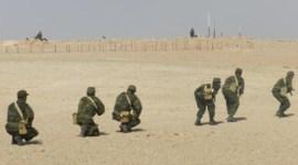 western sahara army