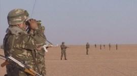 army-algerienne