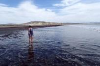 Desert, red kelp, isolation