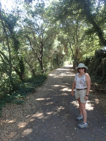 Piner Creek Trail