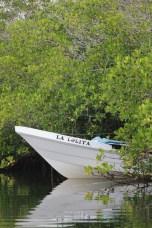 Fishing boats along the estuary