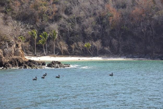 Playa Paraiso, Jalisco