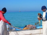 fishermen-in-caleta-partida