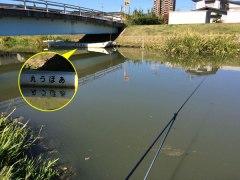 141025船渡川01