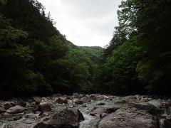 160607王滝川支流2-曇り空