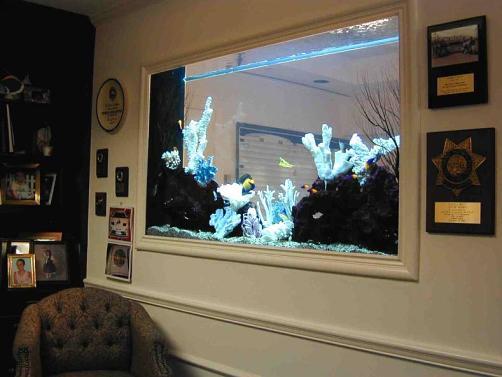 20 gallon aquarium 200 - in acrylic rectangular aquariums next in acrylic rectangular aquariums ...