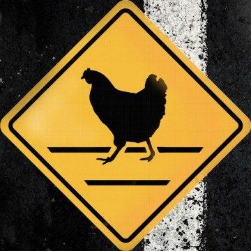 chicken-cross-the-road