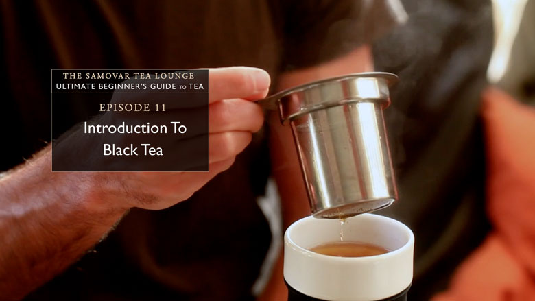 11. Introduction To Black Tea