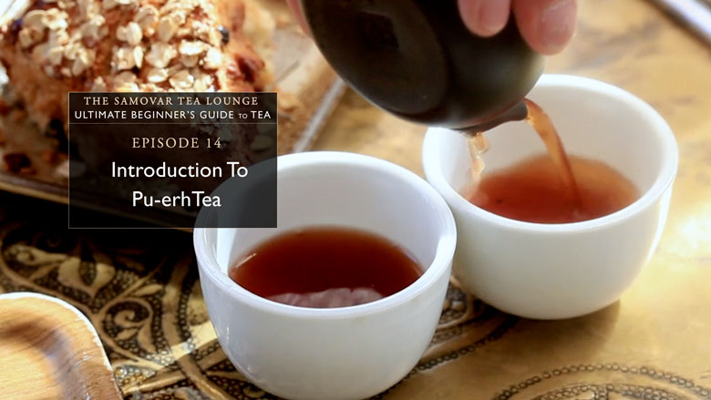14. Introduction To Pu-Erh Tea