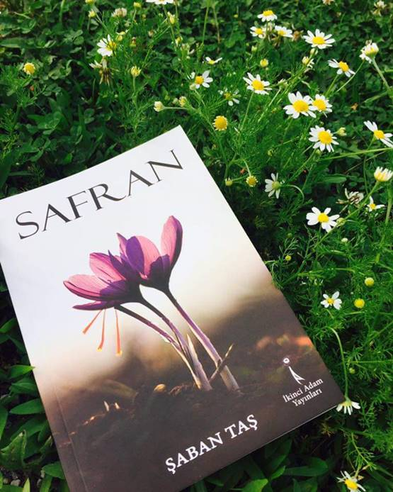 Şaban Taş - Safran