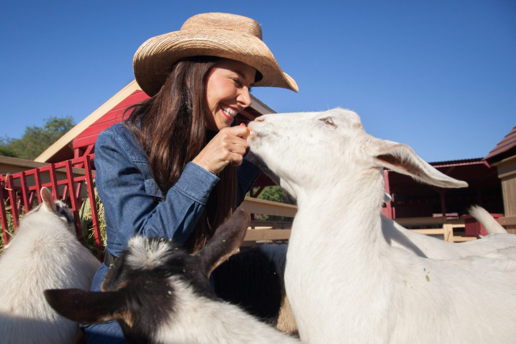 Zoomars Petting Zoo in San Juan Capistrano. Photo: Allison Jarrell