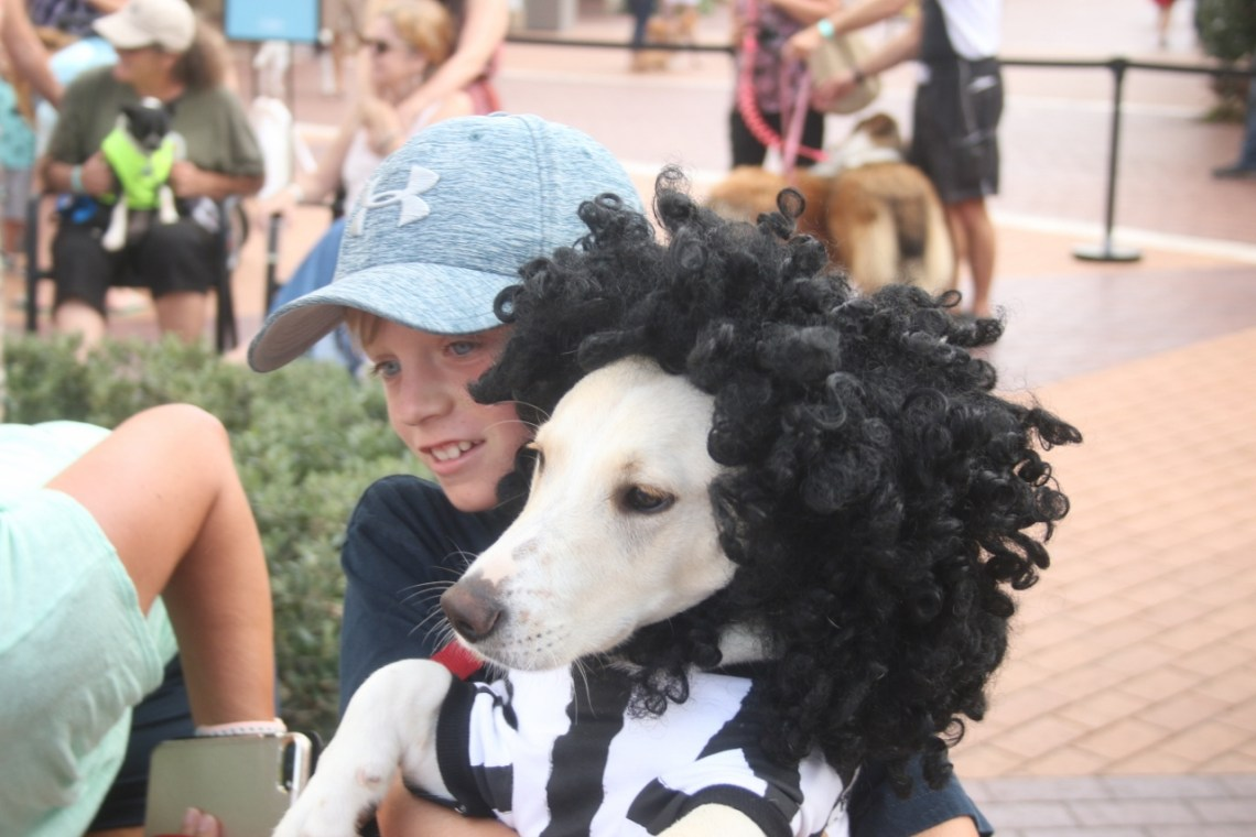 Although the brews were for the adults, it was the children enjoying most of the barks at the Barks and Brews celebration at the Outlets at San Clemente on Aug. 26, which was also National Dog Day.