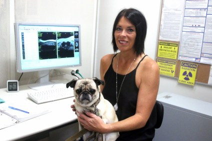 Michelle Murray, owner of NEST Veterinary Neurology, recently opened her business to help find disorders in pets. Photo: Eric Heinz