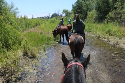 Pictured is a part of the trail from the hour-long guided horseback riding tour along San Juan Creek. Photo: Daniel Ritz