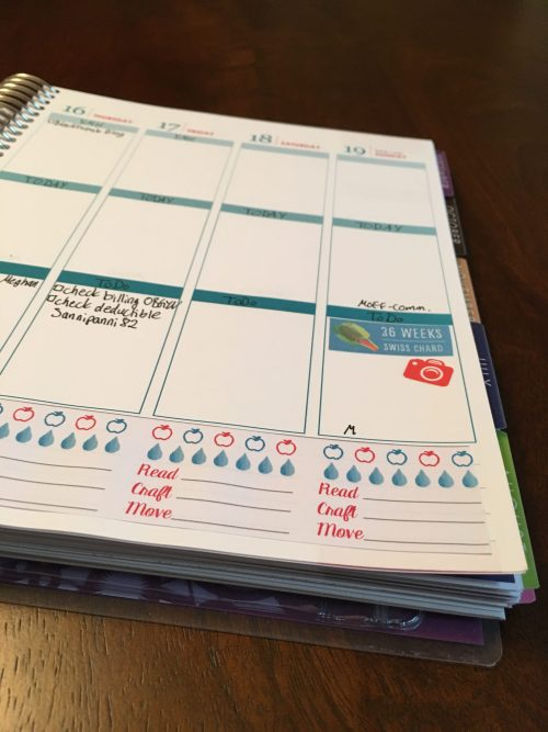 Keeping track of good daily habits in my Erin Condren Plannter