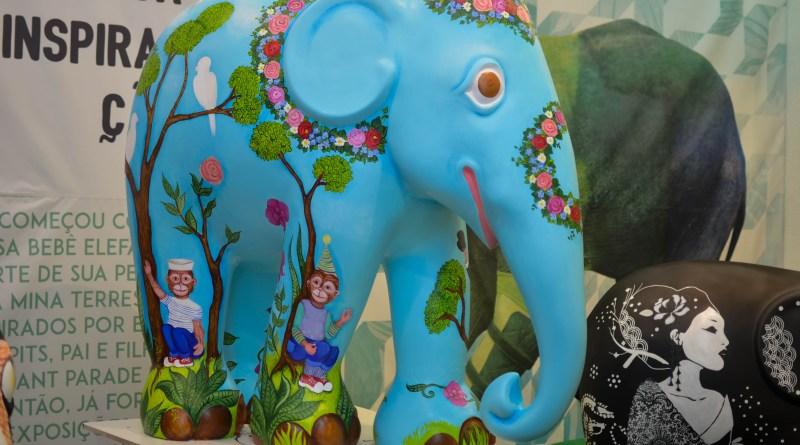 elefante_0807 (2)