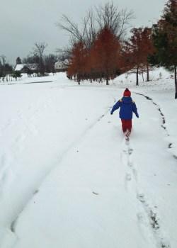 Snowpocalypse2013 039_edit_resize (2)