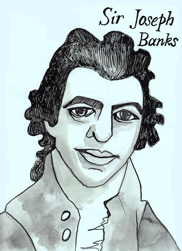 sir joseph banks_web