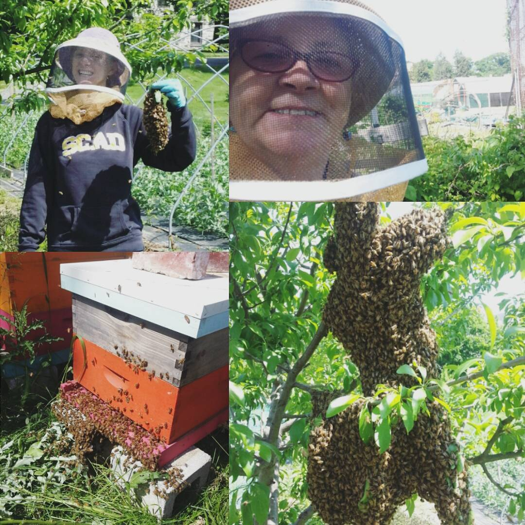 Instagram: Had an awesome time today catching a swarm with my mom! #baddassmama #betsythebeekeeper #bees