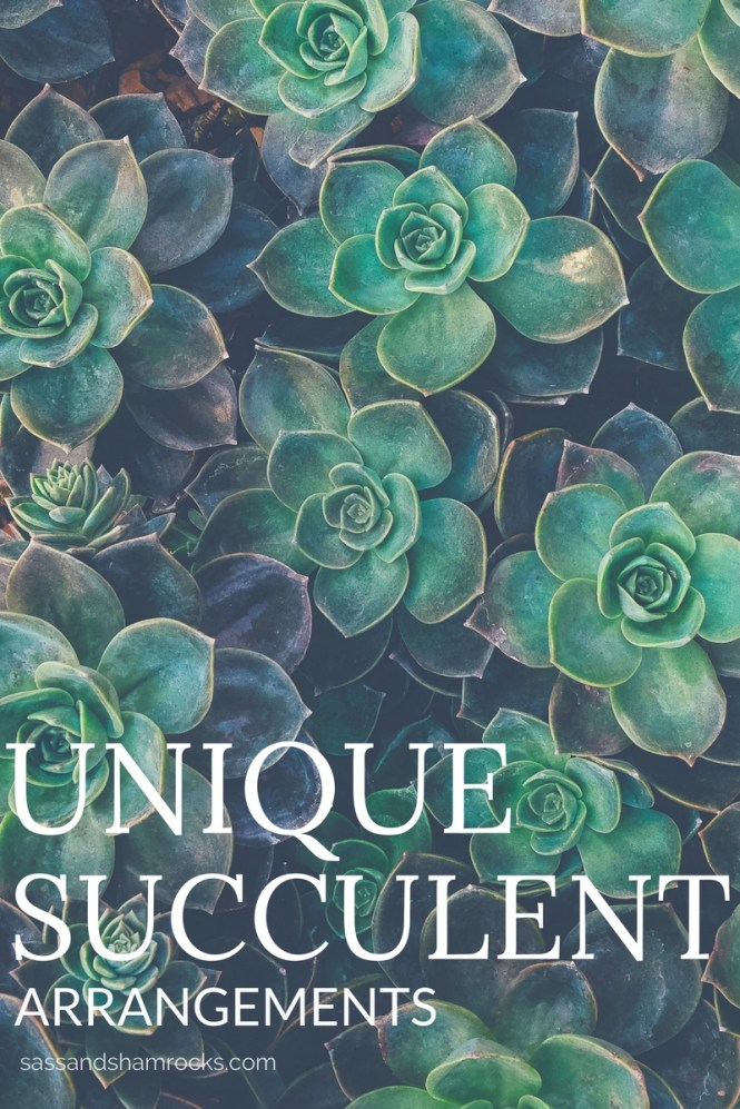 Unique Succulent Arrangements