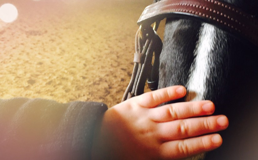 5 Tips For Finding Horseback Riding Lessons For Your Child