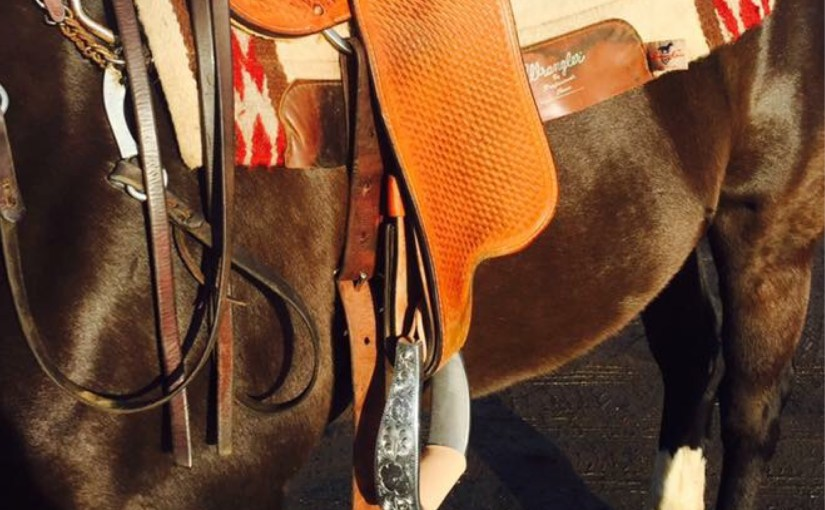 No Stirrup November is No Joke: How It's Kicking My Ass & Can Kick Yours Too